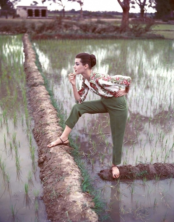 Norman Parkinson - Paddy Fields in the late summer - Photos - Social Photographer's Portfolios #fashion #photography #inspiration