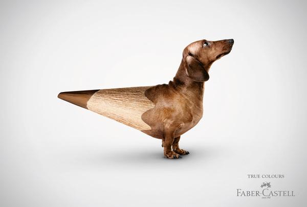 fabercastell truecolours dackel #photography #3d #advertising