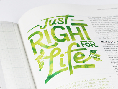 Editorial #fonts #editorial #magazine #typography