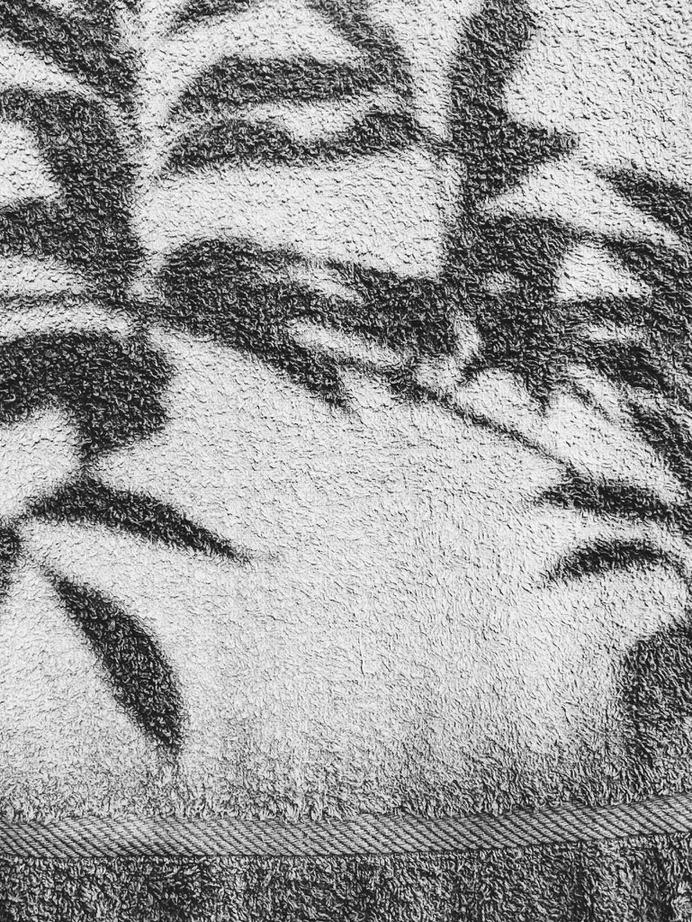 #terrytowel #clothesline #plants