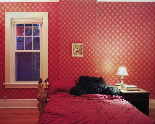 Untitled Interior (german shepherds), 2011 #interior #photography #inspiration