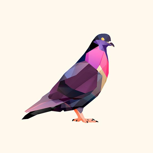 Beasts II on Behance #illustration #pigeon #bird