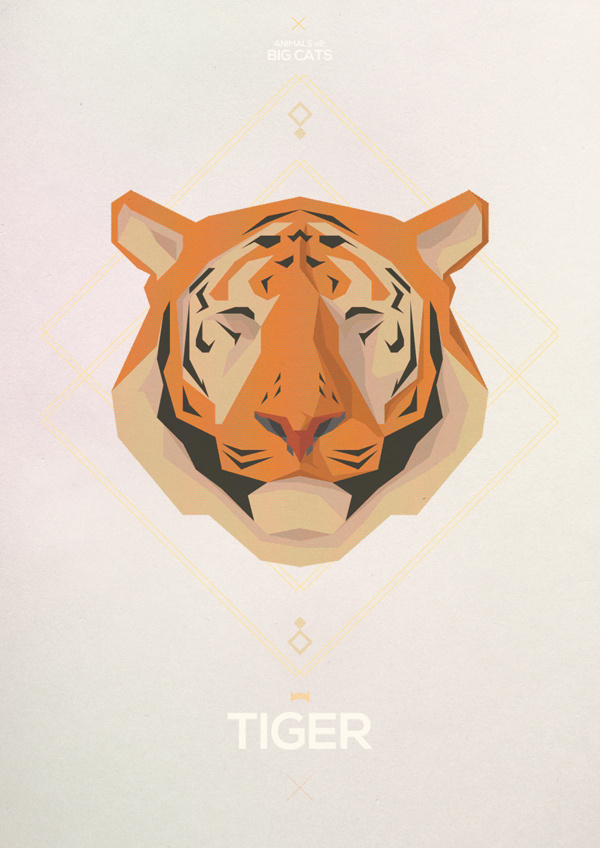 Big Cats - Hadrien Degay Delpeuch