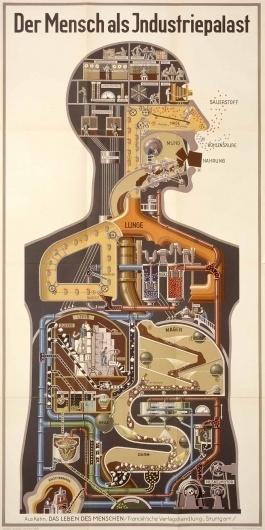 IV-A-01.jpg (1200×2392) #infographic #illustration