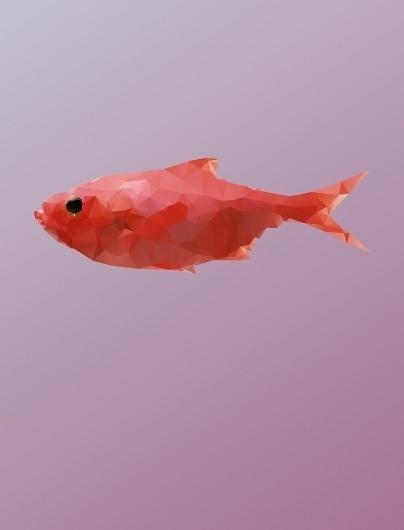 Beetroot Design Group Blog #illustration #fish #animal #animals