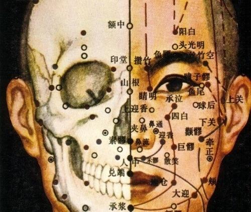 GIOR KONDUCTA - angularcircles: (via gristlebrains) (via... #japan #anatomy #vintage
