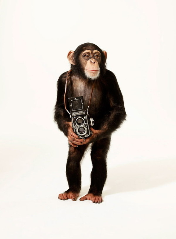 Andrew Eccles #inspiration #photography #commercial