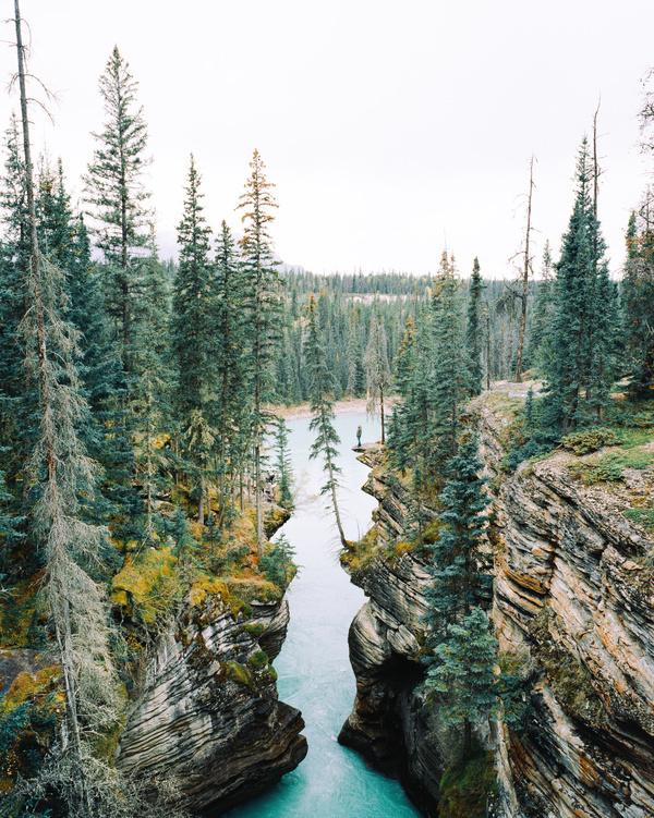 3aa6fea3c264e550 000024990011.jpg #canada #water #photography #nature #trees