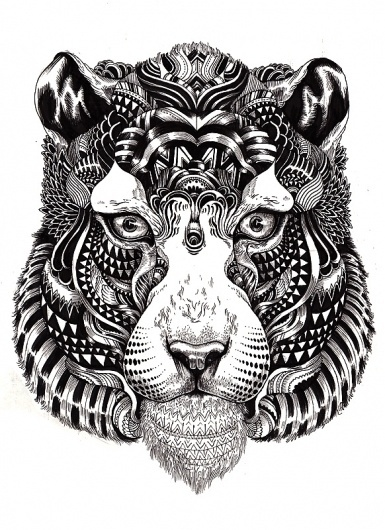 96e669d3f95c3c6e23d508c983ab60ed.jpg 582×800 pixels #illustration #line #animal #tiger