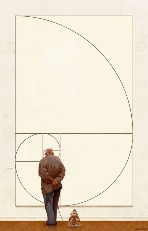 The Golden Ratio by Michal Urbanski #design #golden #art #ratio