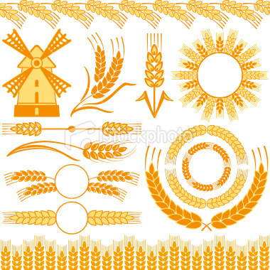 Wheat Royalty Free Stock Vector Art Illustration #wheat