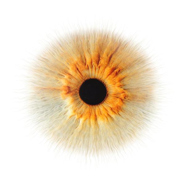 eyes that tell stories · singapore on Behance #eye #portrait