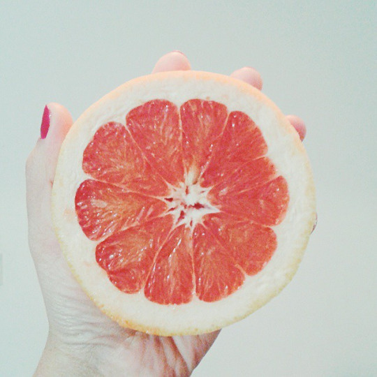 Tumblr #photo #citric #fruits