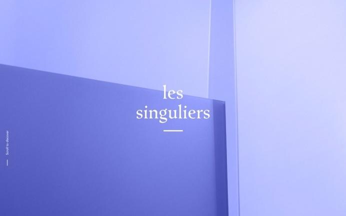 Les Singulairs Paris communication agency france webdesign inspiration best of award site of day mindsparkle mag