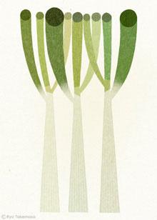 vegetable, illustration, ryotakemasa.com