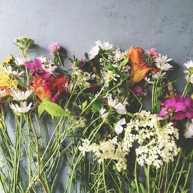 #flowers #Instagram