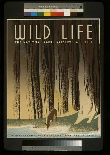 Wild life The national parks preserve all life. #wpa #retro #vintage #poster
