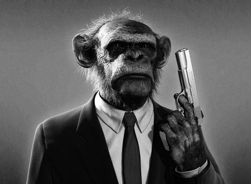 tokyo-bleep #gun #chimpanzee #dogs #photography #reservoir