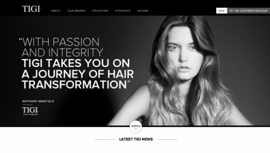 TIGI Professional - Web design inspiration from siteInspire #website