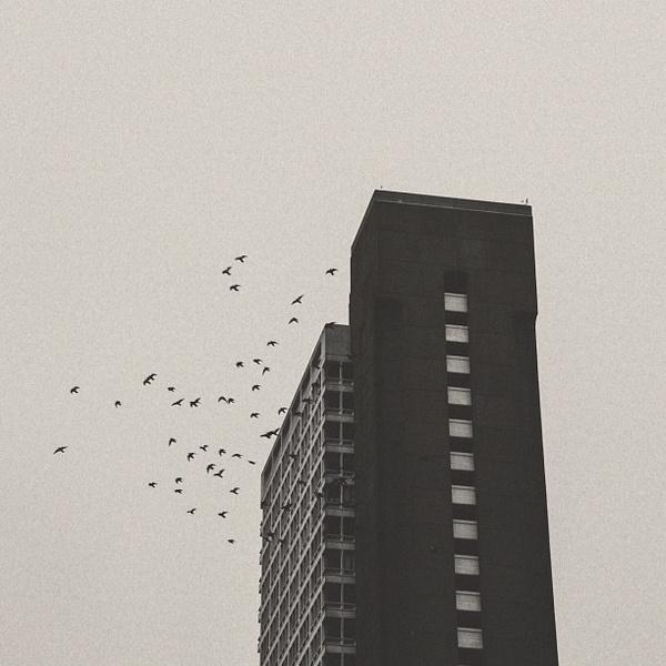 Building | SF #b3po #bw #architecture #instagram