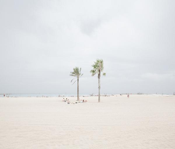 BEACH #beach #palms