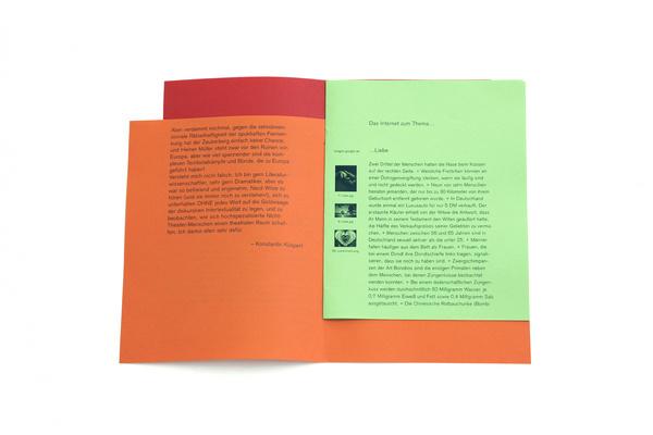 Homo(Sapiens)³ — Johannes Ammler #colors #editorial #brochure #typography