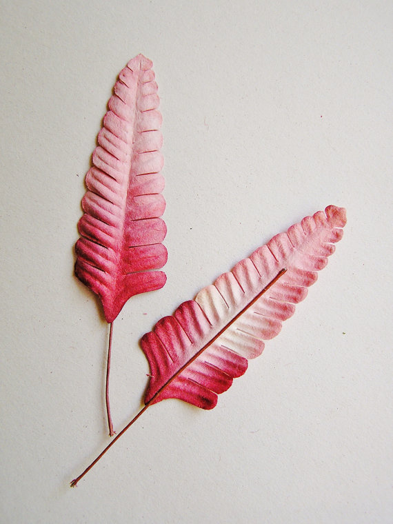 Pink Raspberry ombre ferns Vintage style by thegildedbee on Etsy #pink #magenta #decor #vintage #fern #ombre #plant