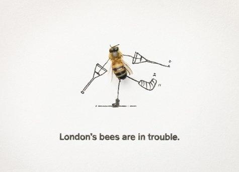 261408_227088167321401_192069374156614_864924_4327682_n.jpg (JPEG Image, 475x343 pixels) #campaign #london #bees