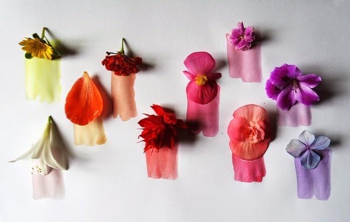 la casita de wendy #watercolor #colors #flowers #shades