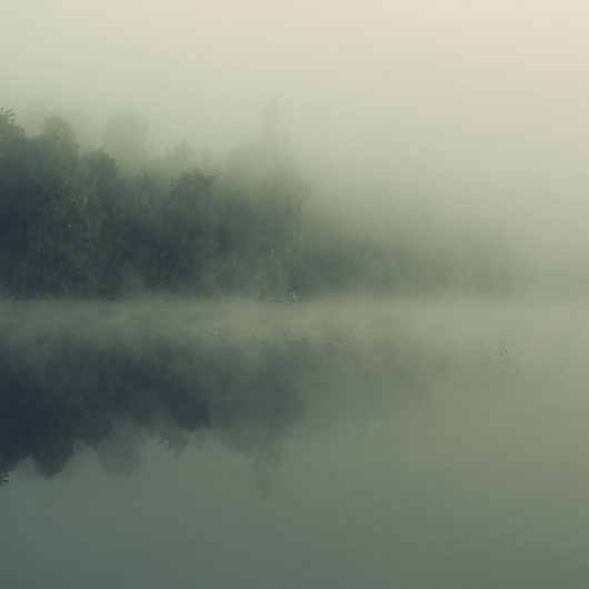 Tuve on the Behance Network #fog #holtermand #kim #photography #nature