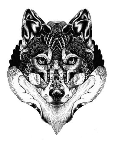 Wildlife part 2 on Behance #wolf