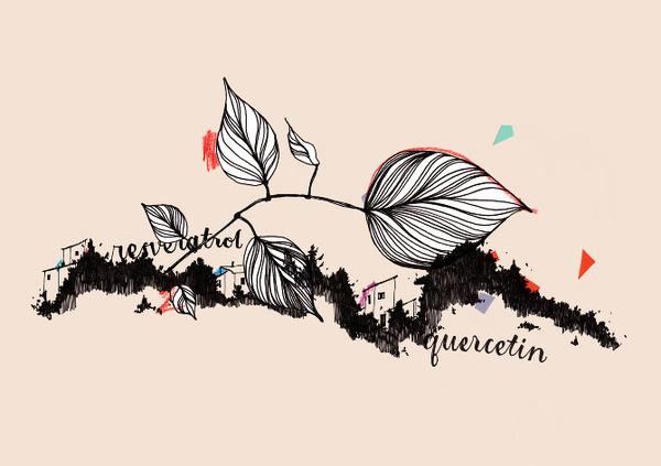 ❦ True Nature identity www.pepijnrooijens.com #illustration #identity