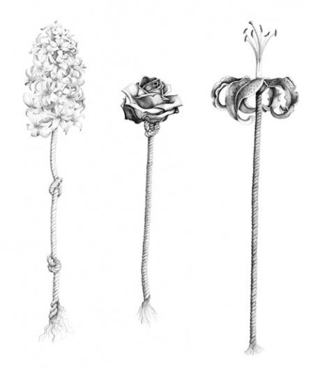izzie klingels | Other #illustration #klingels #izzie