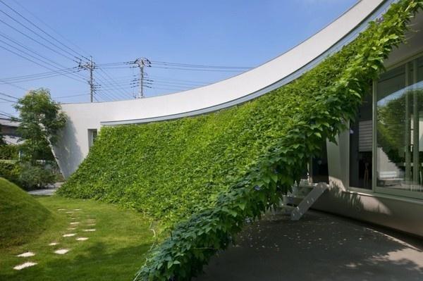 House in Fujizakura by Case Design Studio #house #home #minimalism #minimal #minimalist