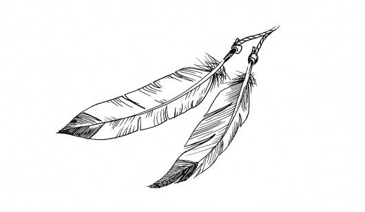 tumblr_m27izx1tXz1rqhy40o1_1280.jpg (1200×700) #blackwhite #feathers #illustration #drawn #hand