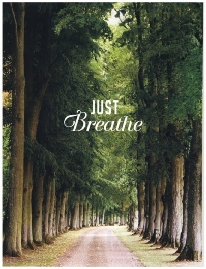 Tiffany Denise #breath #just #trees #park