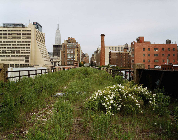 Joel Sternfeld | Friends of the High Line #line #york #nyc #high #new