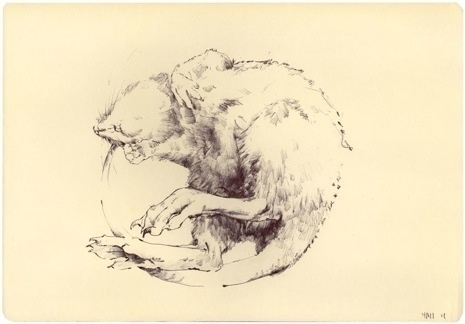 MATT HALL - MARCH 2012 #ink #a #mouse #way #either #or #is #it #rat #pen #and #dead #its