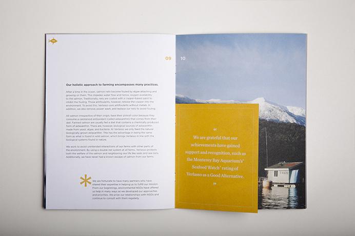 verlassoVerlasso Sustainability Brochure #print #grid #spread #type #layout #brochure