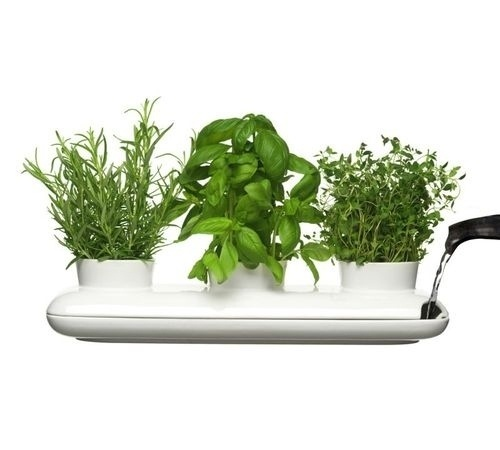 From Scandinavia with love - design & style (Herb pot from Swedish Sagaform.) #product #herb #green