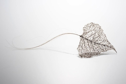 Artist Creates Leaves Using Human Hair - DesignTAXI.com #sculpture #veins #leaf #design #hair #delicate