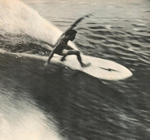 Likes | Tumblr #surfing #movement #photography #film