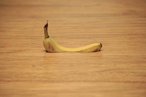 Make Something Cool Every Day 2009 on Behance #banana