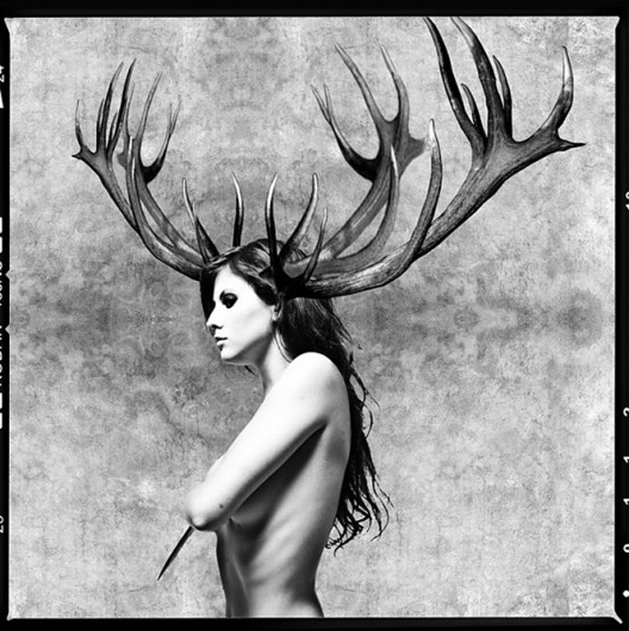 Cargo #deer #white #woman #black #photograph #and