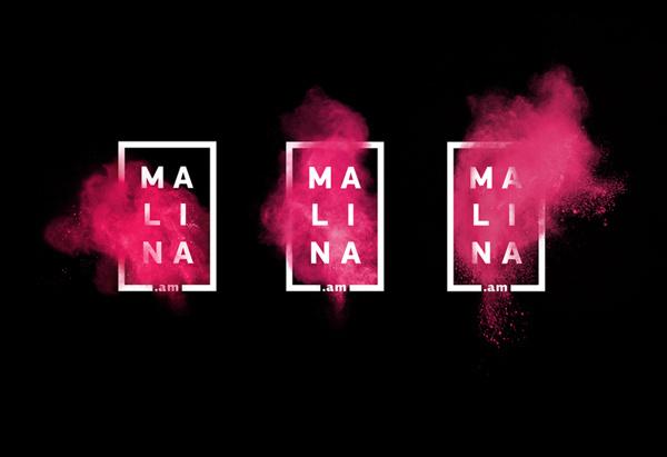 Rasphberry Boom on Behance #logo #malina #raspberry #branding