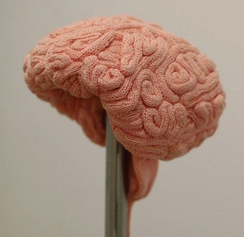 Crochet Brain Hat » Funny, Bizarre, Amazing Pictures & Videos #hadmade #textiles #hats