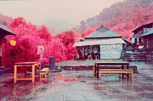 Sean Lynch   PICDIT #pink #photo #landscape #photography #art #surreal