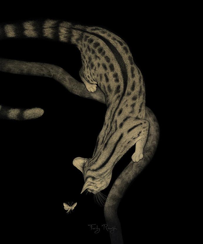 www.ferdyremijn.com #hunt #darkness #tree #feline #pounce #cat #night #illustration #animal #beauty