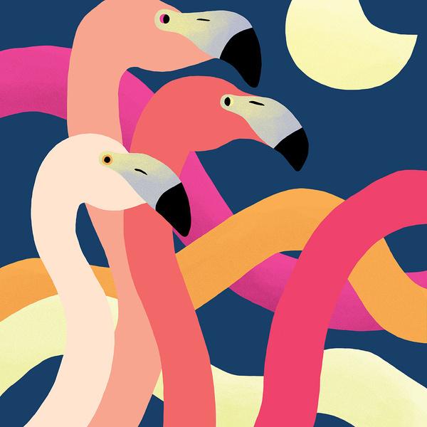 Jessica Das   Moondance #illustration #flamingos