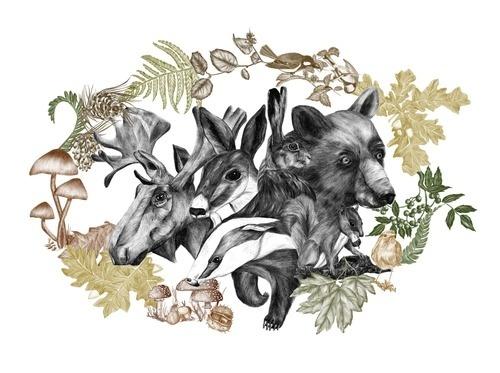 http://www.behance.net/gallery/FLOURISH IN OBSCURITY/6559515 #deer #frame #squirrel #elk #illustration #bookcover #realistic #bear #rabbit